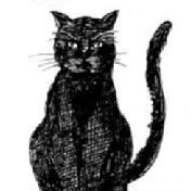 リリーと黒猫